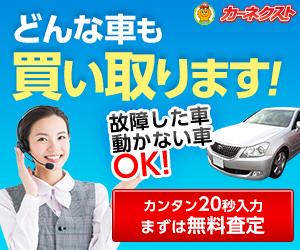 栃木市で車を処分