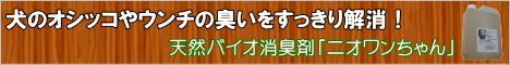 http://www.rentracks.jp/adx/r.html?idx=0.23399.197721.715.1198&dna=18933